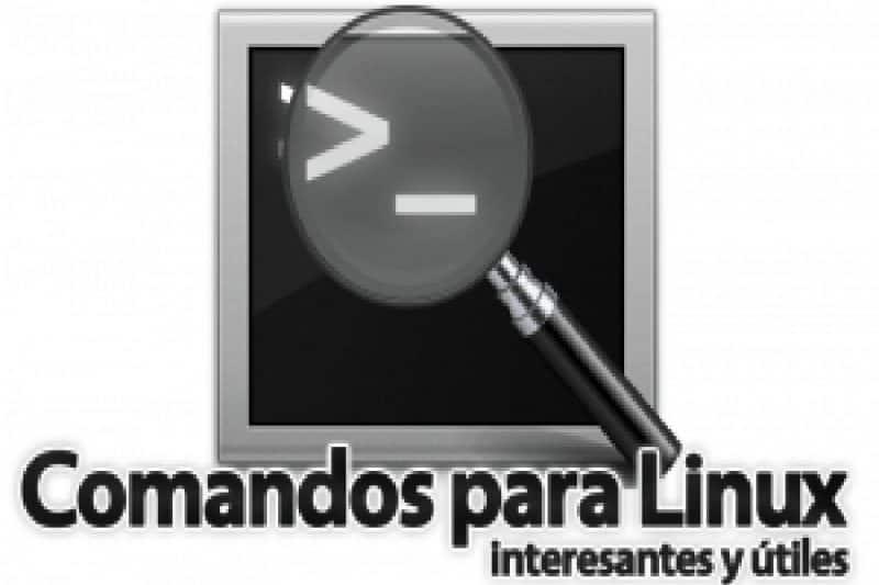 Obtener información del sistema y matar procesos desde la terminal