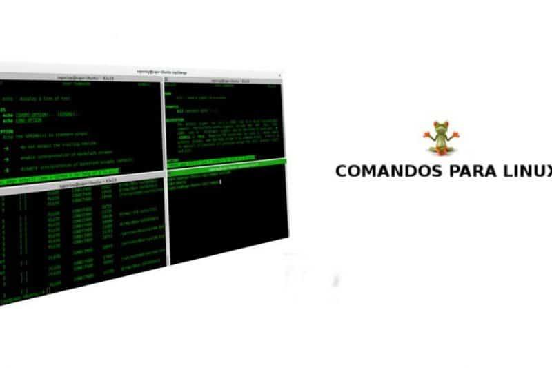 Comandos de terminal, cómo ver los que más utilizas