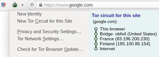 Tor circuit
