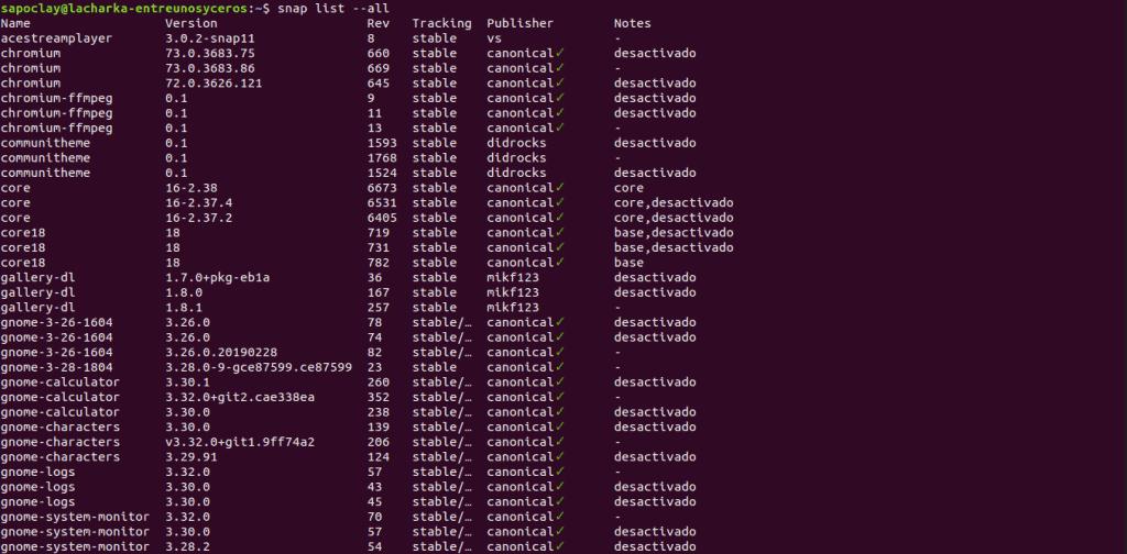 revisiones paquetes snap instalados