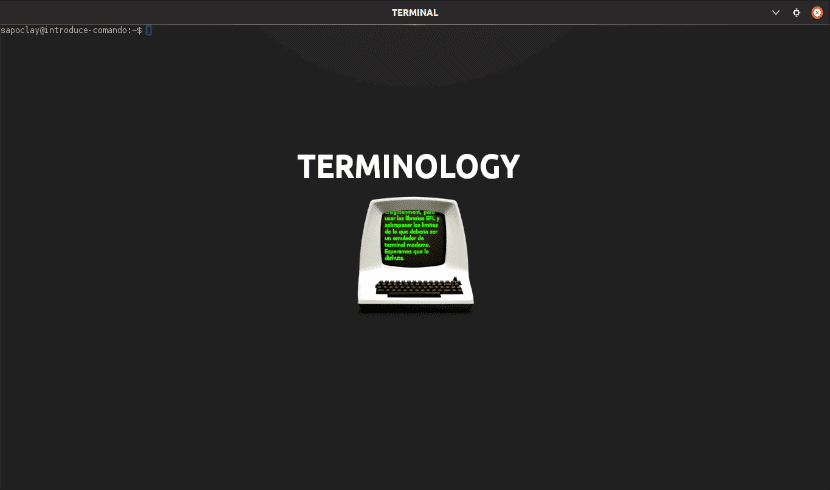 about terminology