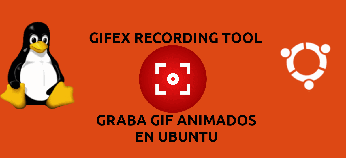 about Gifex